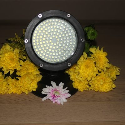 144 LED LIGHT