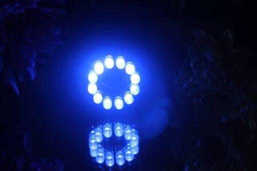 12 LED LIGHT