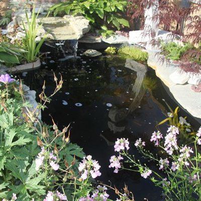 Preformed Ponds & Pond Liners
